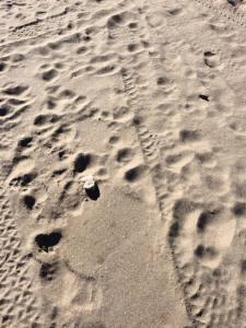 hiekka
