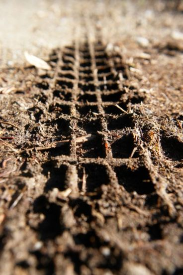 11139099 - close-up of a mountainbike track